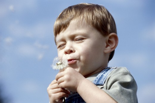 Stock Photo: 1189-1932C Low angle view of a boy holding a dandelion