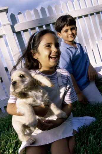 Boy and a girl playing with a dog on a lawn : Stock Photo