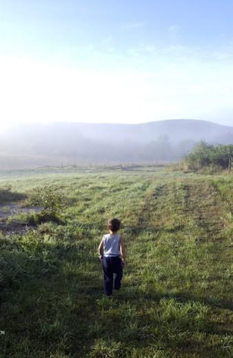 Stock Photo: 1213-168 Rear view of a boy walking in a field