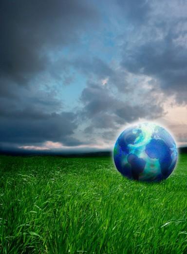 Globe in a field : Stock Photo