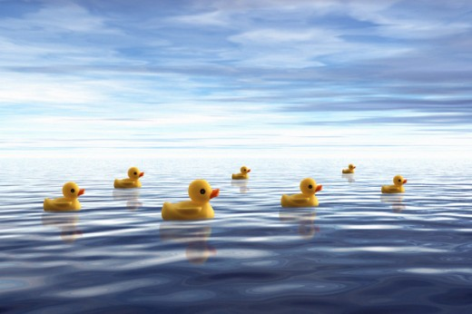 Rubber ducks floating on water : Stock Photo