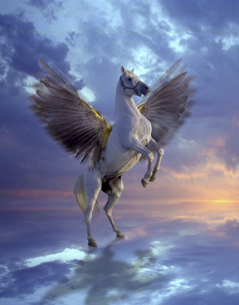 Stock Photo: 1245-132 Pegasus