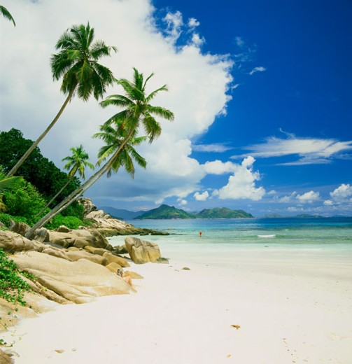 Stock Photo: 1246-632 La Digue