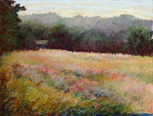 Gray Day in the Pink Field