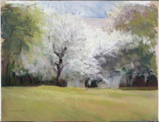 Spring at the H's