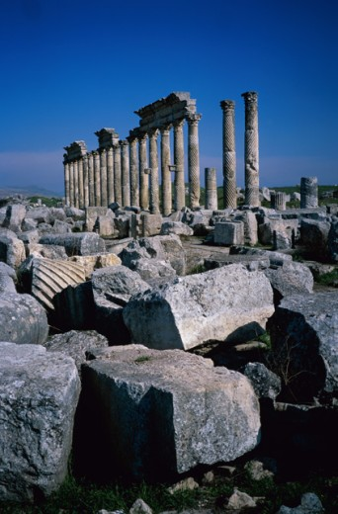 Stock Photo: 1264-932 Cardo Maximus Apamea Syria