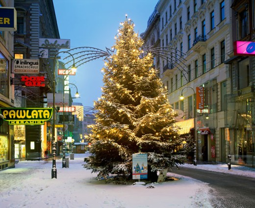 Stock Photo: 1269-1483 A decorated Christmas tree, Vienna, Austria