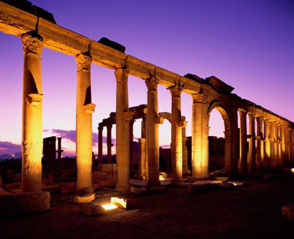 Great Colonnade Palmyra Syria : Stock Photo