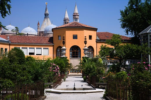 Botanical garden in front of a building, Orto Botanico di Padova, Padua, Veneto, Italy : Stock Photo
