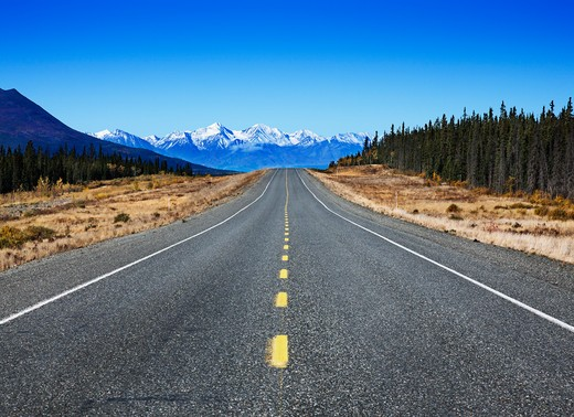 Highway passing through a landscape, Alaska Highway, Canada : Stock Photo