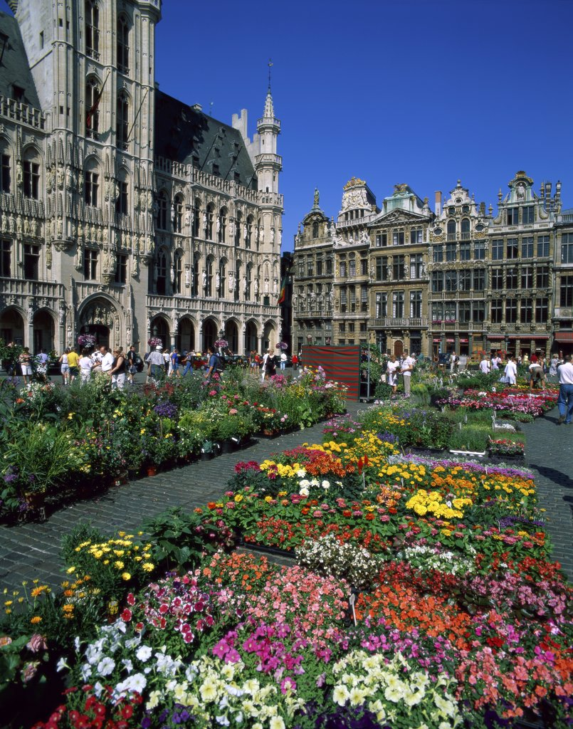 Tourists at a flower market, Grand Place, Brussels, Belgium : Stock Photo