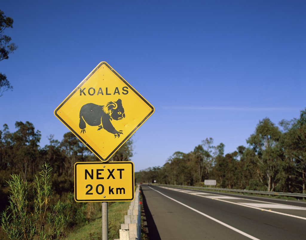 Close-up of animal crossing sign on a roadside, Queensland, Australia : Stock Photo