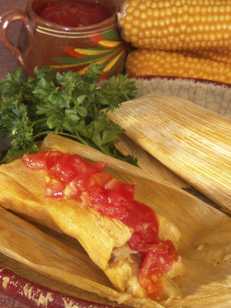 Stock Photo: 1289-340 Close-up of tomato sauce spread on tamales