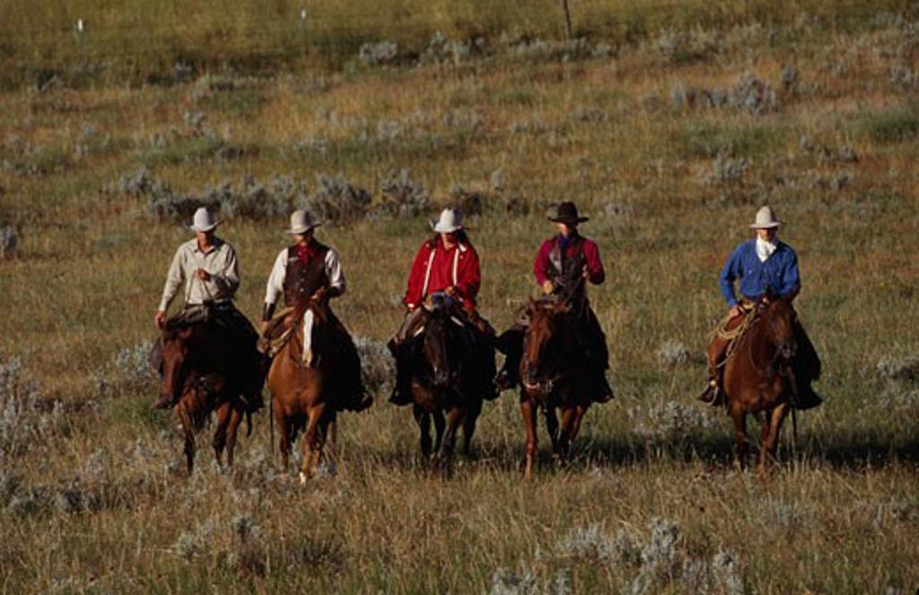 Stock Photo: 1308-433 Dayton Wyoming USA