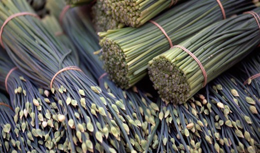 Stock Photo: 1311-1160 Bunches of plants on the market,  close-up