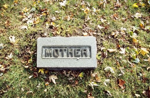 Rosedale Cemetery Chicago Illinois, USA : Stock Photo