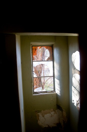 Broken window of an old house, Encino, New Mexico, USA : Stock Photo