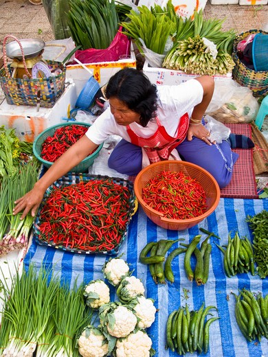 Stock Photo: 1311-2366 Thailand, Thai woman selling her fresh vegetables