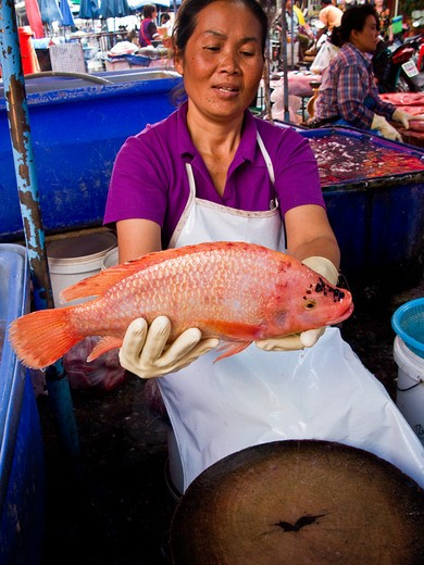 Stock Photo: 1311-2392 Thailand, Woman selling fish at street market