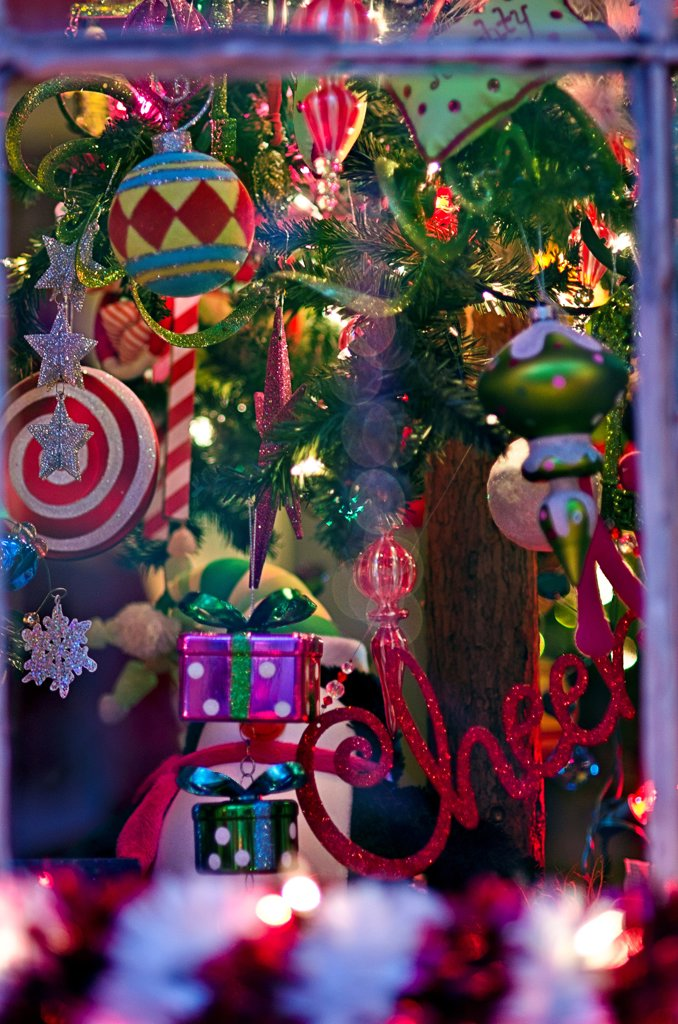 Stock Photo: 1311-2711 Christmas decoration at night, French Quarter, New Orleans, Louisiana, USA