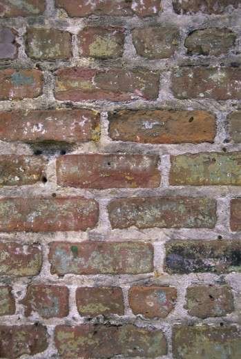 Close-up of a brickwall : Stock Photo