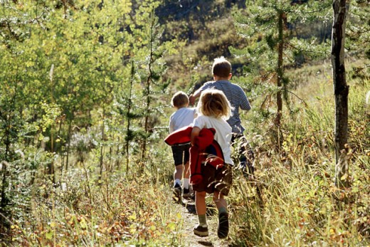 Stock Photo: 1315-135 Rear view of three children walking up a hill