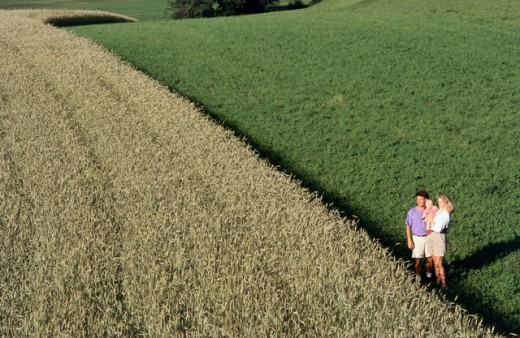 Stock Photo: 1315-870 High angle view of parents with their son standing in a field