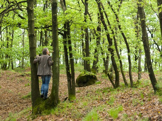 Italy, Piedmont, man standing between trees in forest : Stock Photo
