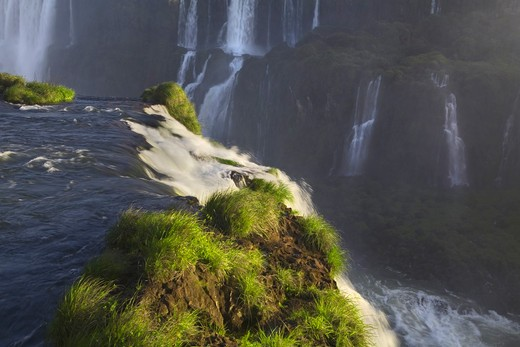 Stock Photo: 1317-1007 Waterfalls in a forest, Iguacu Falls, Argentina-Brazil Border