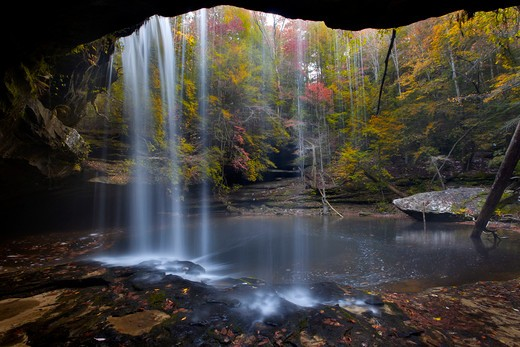 Stock Photo: 1317-1267 Waterfall in a forest, Sipsey Wilderness, Bankhead National Forest, Alabama, USA
