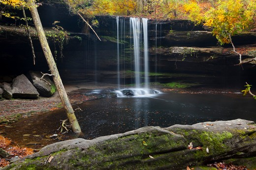Stock Photo: 1317-1269 Water falling from rocks, Sipsey Wilderness, Bankhead National Forest, Alabama, USA