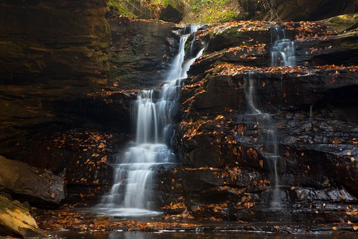 Stock Photo: 1317-1270 Waterfall in a forest, Sipsey Wilderness, Bankhead National Forest, Alabama, USA