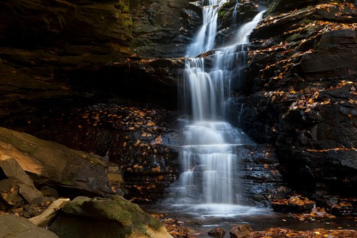 Waterfall in a forest, Sipsey Wilderness, Bankhead National Forest, Alabama, USA : Stock Photo