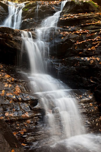 Water falling from rocks, Sipsey Wilderness, Bankhead National Forest, Alabama, USA : Stock Photo