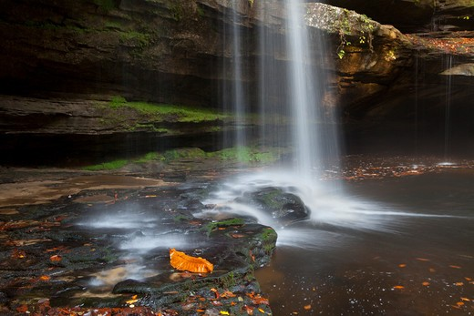 Stock Photo: 1317-1273 Water falling from rocks, Sipsey Wilderness, Bankhead National Forest, Alabama, USA
