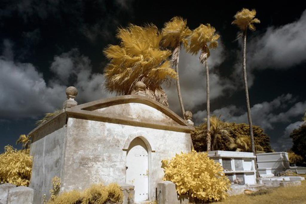 Stock Photo: 1317-1329 USA, Florida, Key West, Key West Graveyard