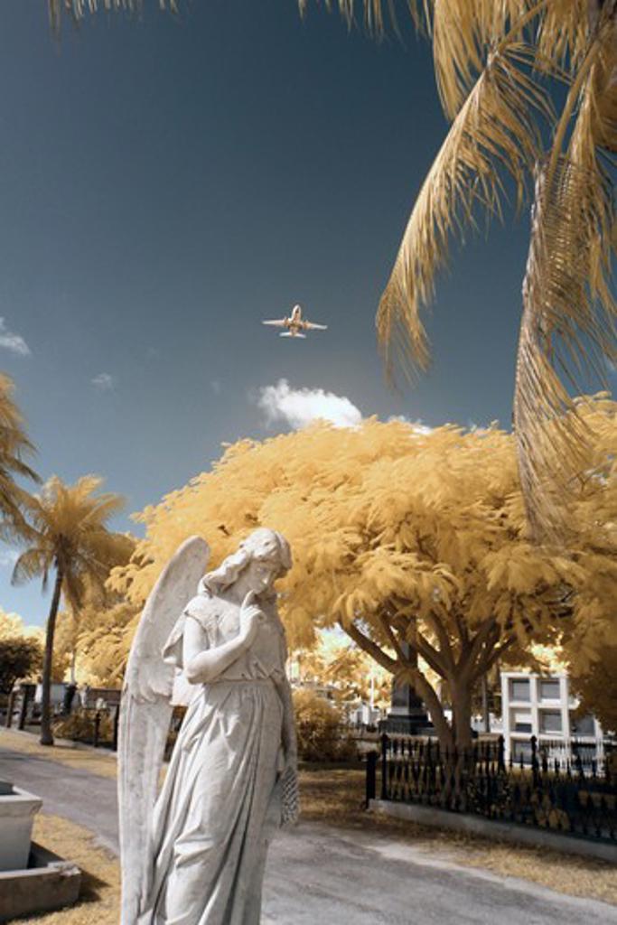 Stock Photo: 1317-1331 USA, Florida, Key West, Key West Graveyard