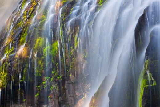 Stock Photo: 1317-1520 USA, Oregon, Oregon Waterfall in Cascade Range