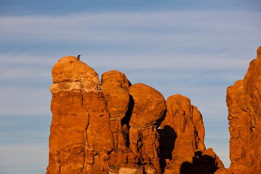 Stock Photo: 1317-564 Rock formations, Lone Rock, Parade Of Elephants, Arches National Park, Utah, USA