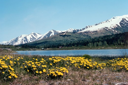 Stock Photo: 1322-430 Lake in front of snowcapped mountain, Alaska, USA