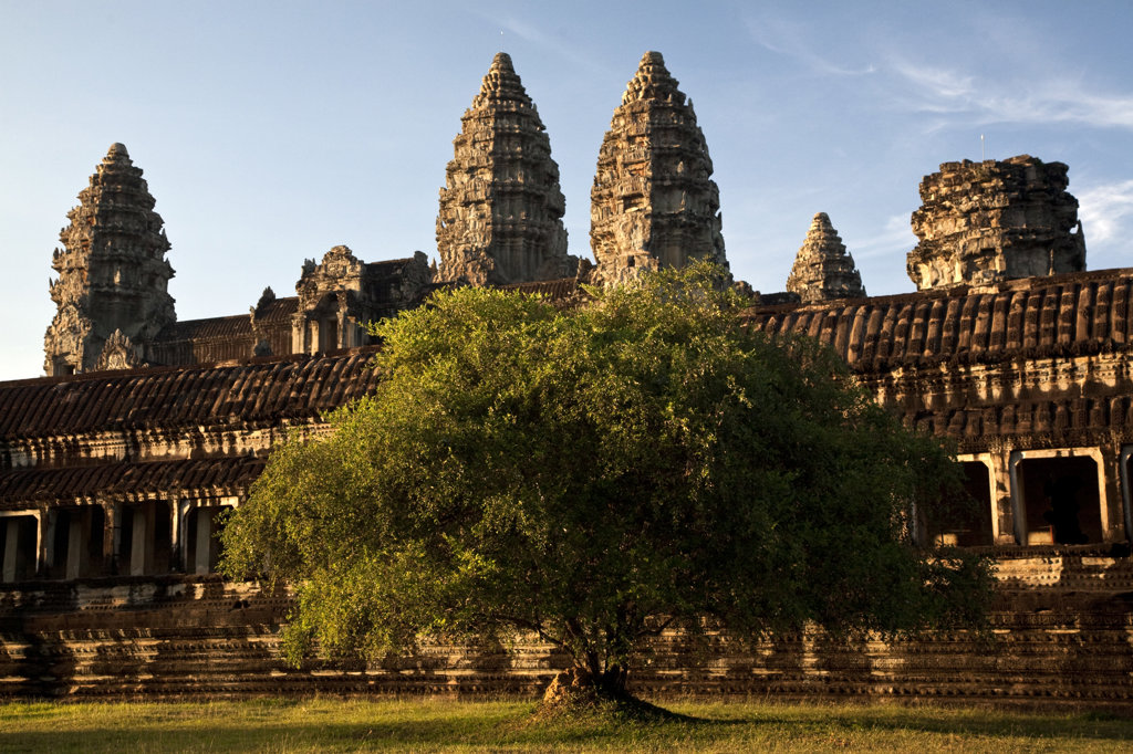 Stock Photo: 1323-1273 Tree in front of a temple, Angkor Wat, Angkor, Cambodia