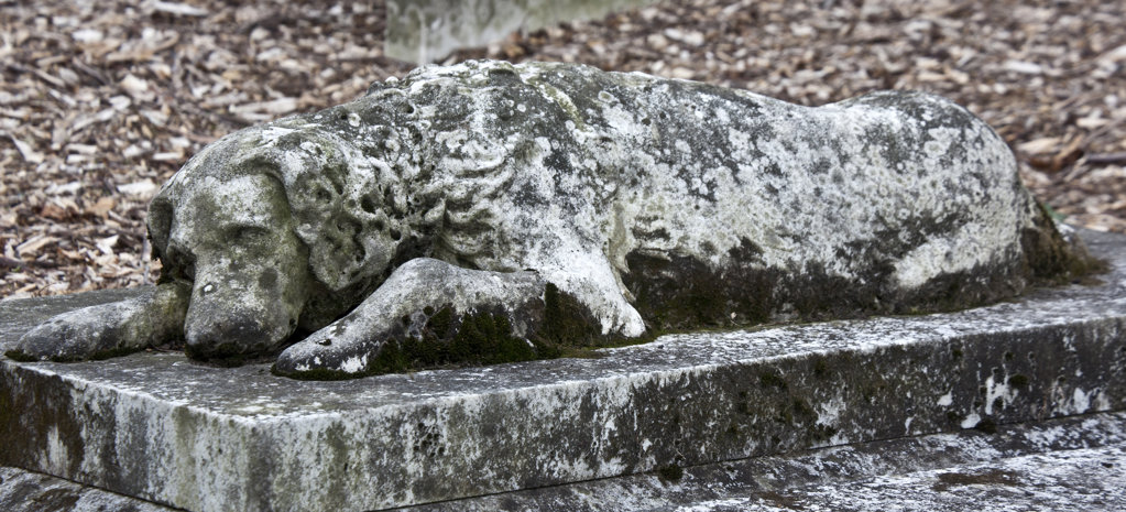 Stock Photo: 1323-1978 USA, Massachusetts, Boston, Dog Statue on tomb at Mount Auburn Cemetery