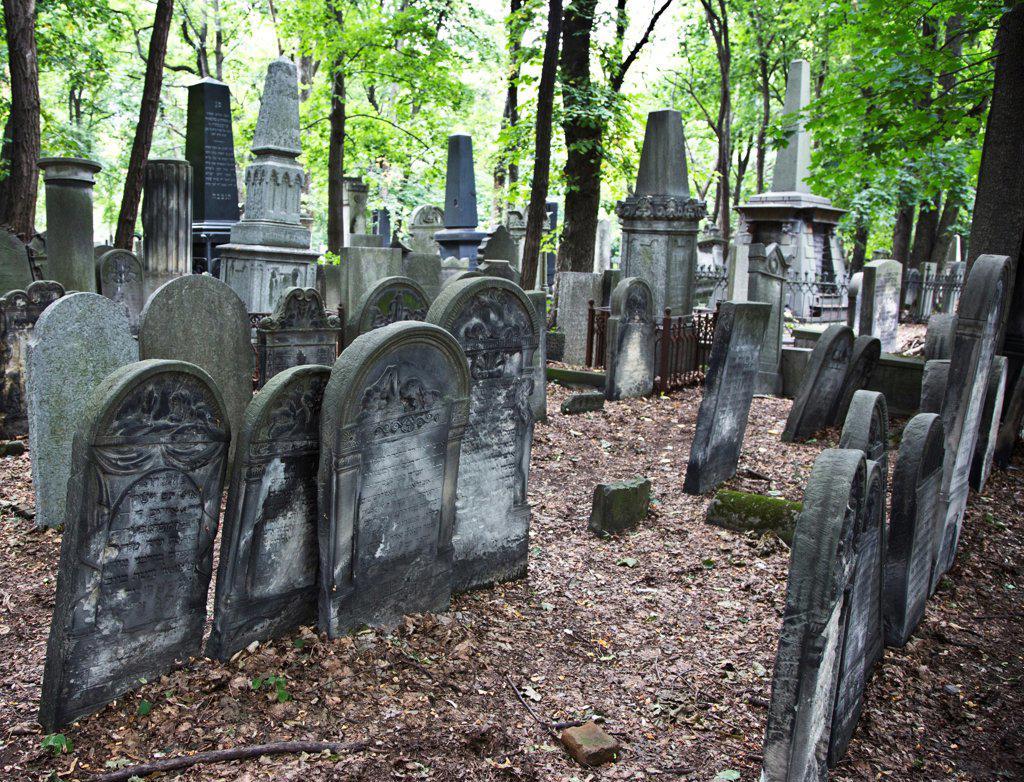 Stock Photo: 1323-2303 Poland, Warsaw, Oskopowas Street Jewish Cemetery