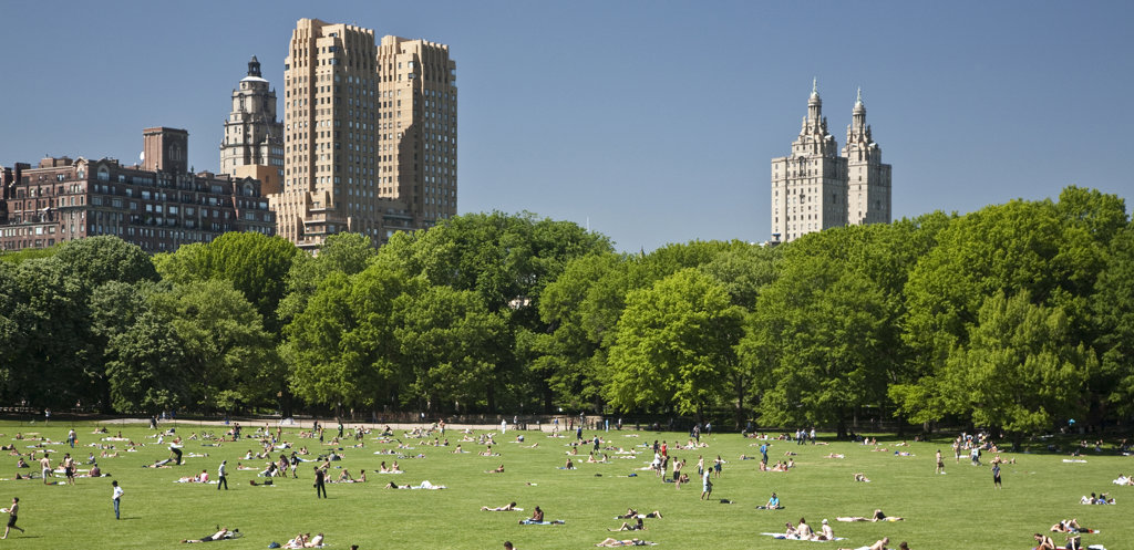 Stock Photo: 1323-942 Tourists in a park, Central Park, Manhattan, New York City, New York State, USA