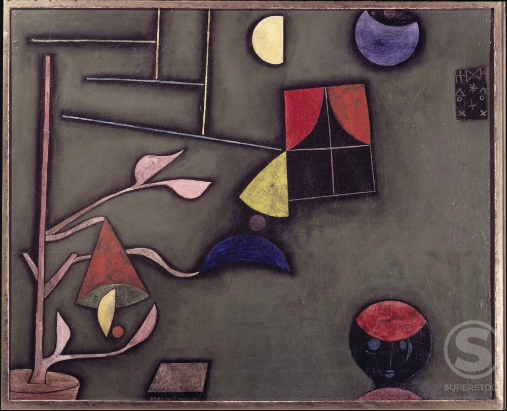 Still Life With Plant And Window