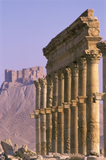 Stock Photo: 1331-123 Palmyra