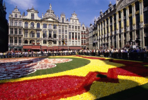 Stock Photo: 1332-158 Flower garden in front of Grand Place, Brussels, Belgium