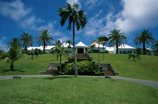 Palm Grove  Bermuda : Stock Photo