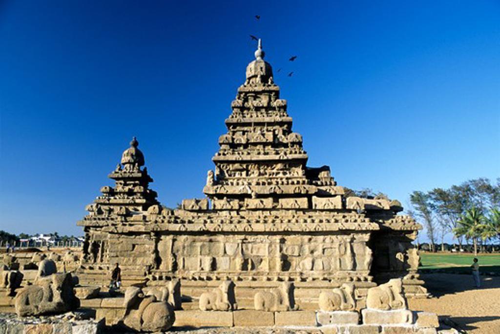 Sculptures at a temple, Shore Temple, Mahabalipuram, Kanchipuram District, Tamil Nadu, India : Stock Photo