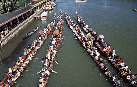 Group of people participating in a traditional snake boat racing, Payippad Boat Race, Payippad Lake, Kerala, India : Stock Photo
